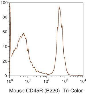 CD45R Antibody (RM2606) in Flow Cytometry