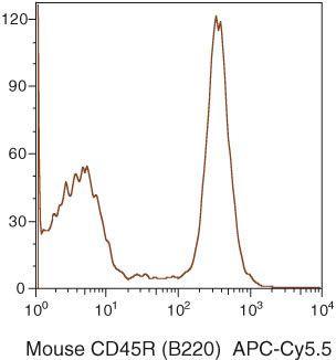 CD45R Antibody (RM2619)