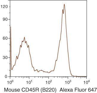CD45R Antibody (RM2621)