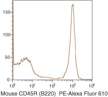 CD45R Antibody (RM2622)