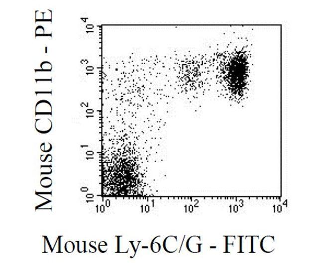Ly-6G Antibody (RM3001)