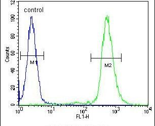 S6 Antibody (PA5-26041) in Flow Cytometry