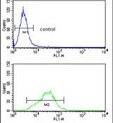 RPS9 Antibody (PA5-13569) in Flow Cytometry