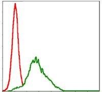 RSK2 Antibody (MA5-15920) in Flow Cytometry