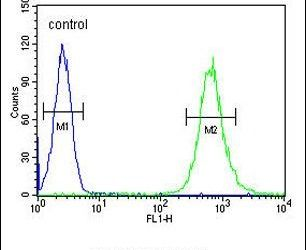SLC35E2 Antibody (PA5-24287) in Flow Cytometry