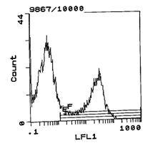 Rat Ig, kappa Secondary Antibody (SA5-10179) in Flow Cytometry