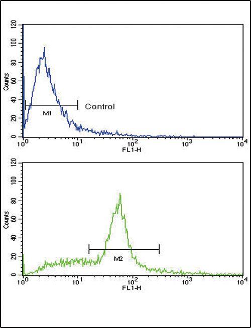 SCF Antibody (PA5-11563) in Flow Cytometry