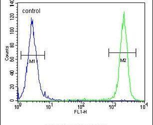 SEL1L Antibody (PA5-24179) in Flow Cytometry