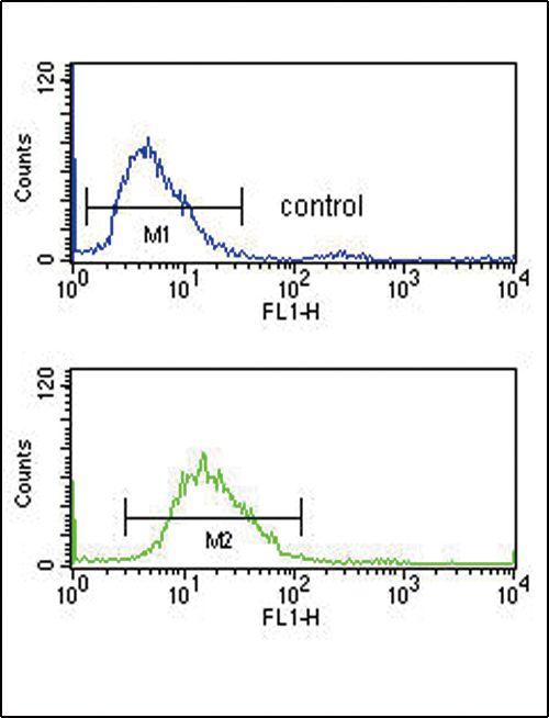 PEDF Antibody (PA5-14199) in Flow Cytometry