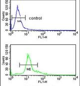 PEDF Antibody (PA5-14200) in Flow Cytometry