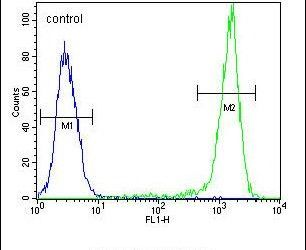 SGMS2 Antibody (PA5-26802) in Flow Cytometry