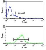 SH2D1B Antibody (PA5-26134) in Flow Cytometry