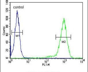 ST8SIA3 Antibody (PA5-25508) in Flow Cytometry