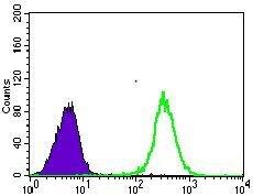GLUT4 Antibody (MA5-17176) in Flow Cytometry