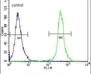 SLC43A2 Antibody (PA5-23571) in Flow Cytometry