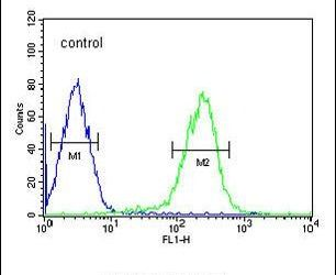 SMAD6 Antibody (PA5-25263) in Flow Cytometry