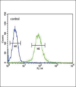 SMS Antibody (PA5-25777) in Flow Cytometry