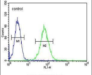 SMYD1 Antibody (PA5-24433) in Flow Cytometry