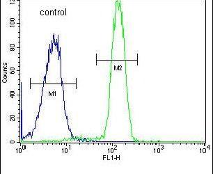 SP5 Antibody (PA5-26934) in Flow Cytometry
