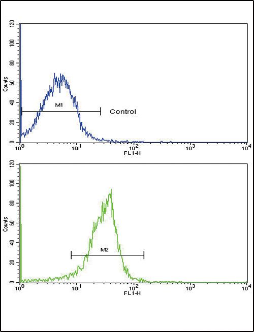 SPARC Antibody (PA5-13703) in Flow Cytometry