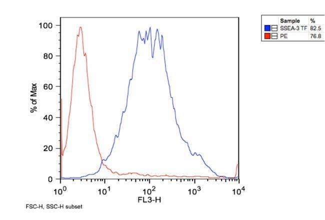 SSEA3 Antibody (MA1-020X) in Flow Cytometry