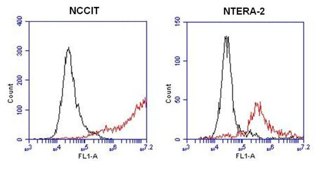 SSEA5 Antibody (MA1-144) in Flow Cytometry