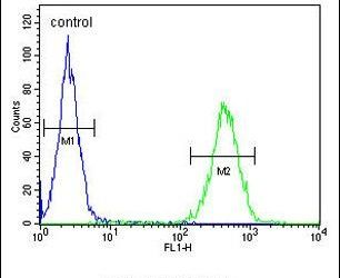 ST7 Antibody (PA5-23995) in Flow Cytometry