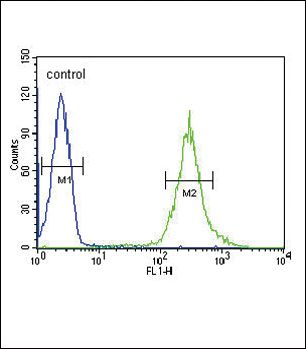 ST8SIA4 Antibody (PA5-26774) in Flow Cytometry