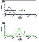 SUMO1 Antibody (PA5-24560) in Flow Cytometry