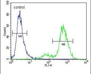 SYCE2 Antibody (PA5-23917) in Flow Cytometry