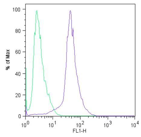 SOX2 Antibody (MA1-014) in Flow Cytometry