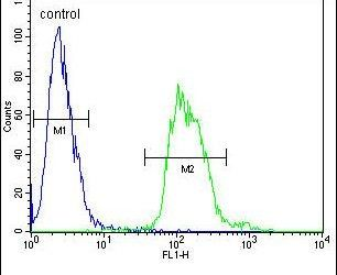 TAC1 C-terminal Peptide Antibody (PA5-25766) in Flow Cytometry