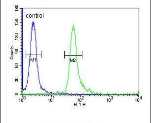 TAGAP Antibody (PA5-24442) in Flow Cytometry