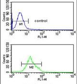 TCHP Antibody (PA5-26363) in Flow Cytometry