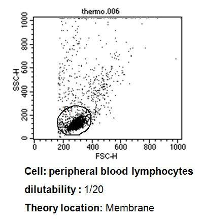 TCR V beta 3.1 Antibody (TCR2740)