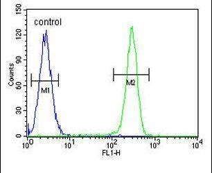 OX40L Antibody (PA5-24552) in Flow Cytometry
