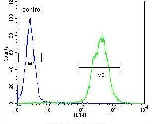 TOX3 Antibody (PA5-24743) in Flow Cytometry