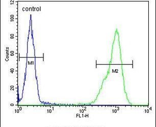 TPPP3 Antibody (PA5-24925) in Flow Cytometry