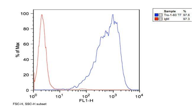 TRA-1-60 Antibody (MA1-023) in Flow Cytometry