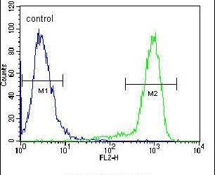 TrkA Antibody (PA5-14746) in Flow Cytometry