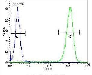 TSPAN33 Antibody (PA5-26404) in Flow Cytometry