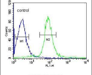 VHL Antibody (PA5-13488) in Flow Cytometry