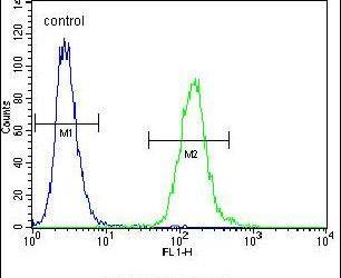 WDR21C Antibody (PA5-24117) in Flow Cytometry