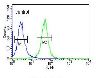 WDR73 Antibody (PA5-25221) in Flow Cytometry