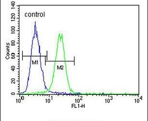 XRCC1 Antibody (PA5-25458) in Flow Cytometry