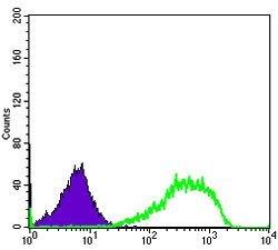 Ku80 Antibody (MA5-15873) in Flow Cytometry