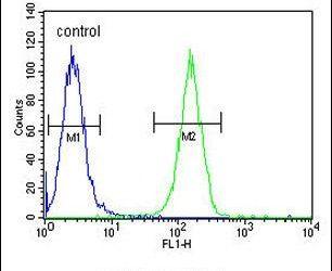 Ku70 Antibody (PA5-25011) in Flow Cytometry