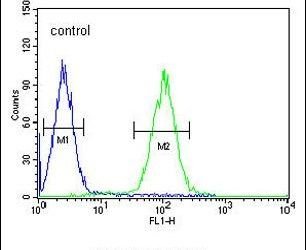 ZNF169 Antibody (PA5-24010) in Flow Cytometry