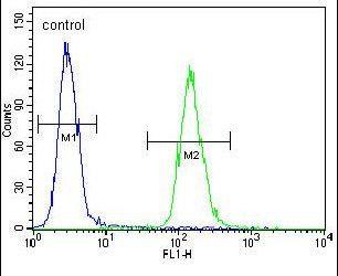 ZNF536 Antibody (PA5-24338) in Flow Cytometry