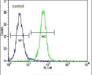 ZNF611 Antibody (PA5-24102) in Flow Cytometry
